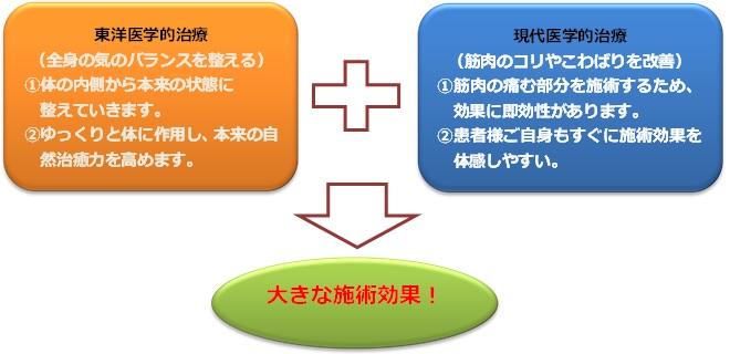 施術効果説明図